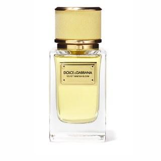 super popular 8f190 1d29a Dolce & Gabbana Velvet Mimosa Bloom EDP 150ml