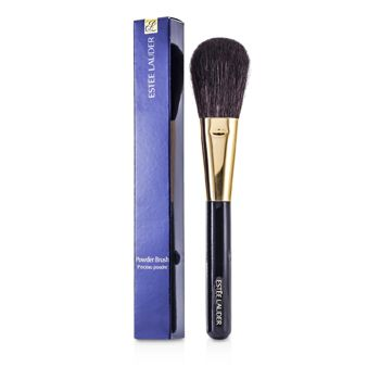 Powder Brush 10